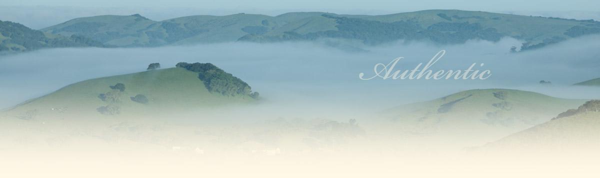 fog in valley below five sisters ranch