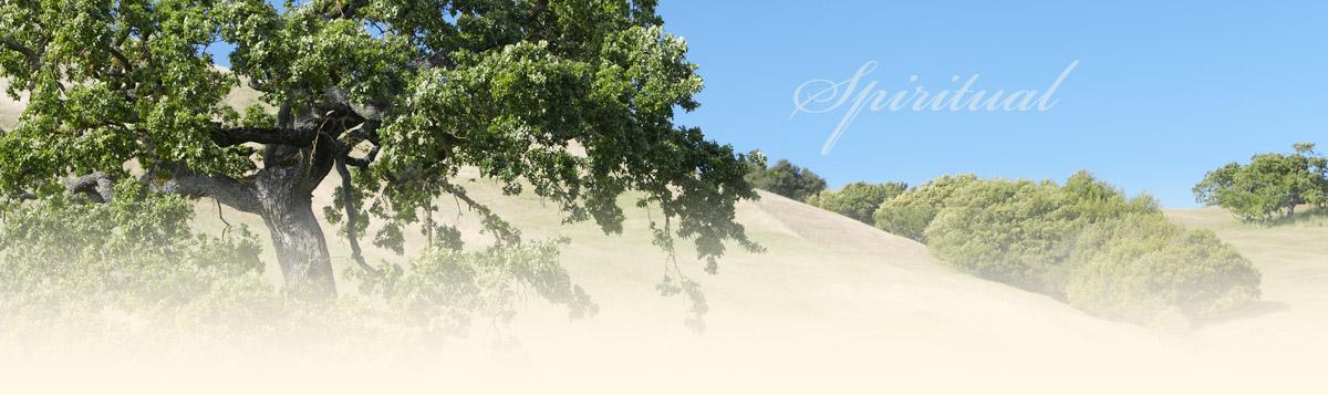 rolling hills and oak trees