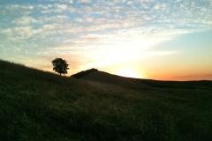Five-Sisters-Ranch_sunrise2