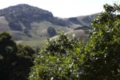 Five-Sisters-Ranch_valley4