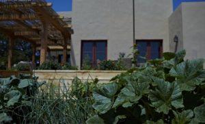 five sisters ranch garden